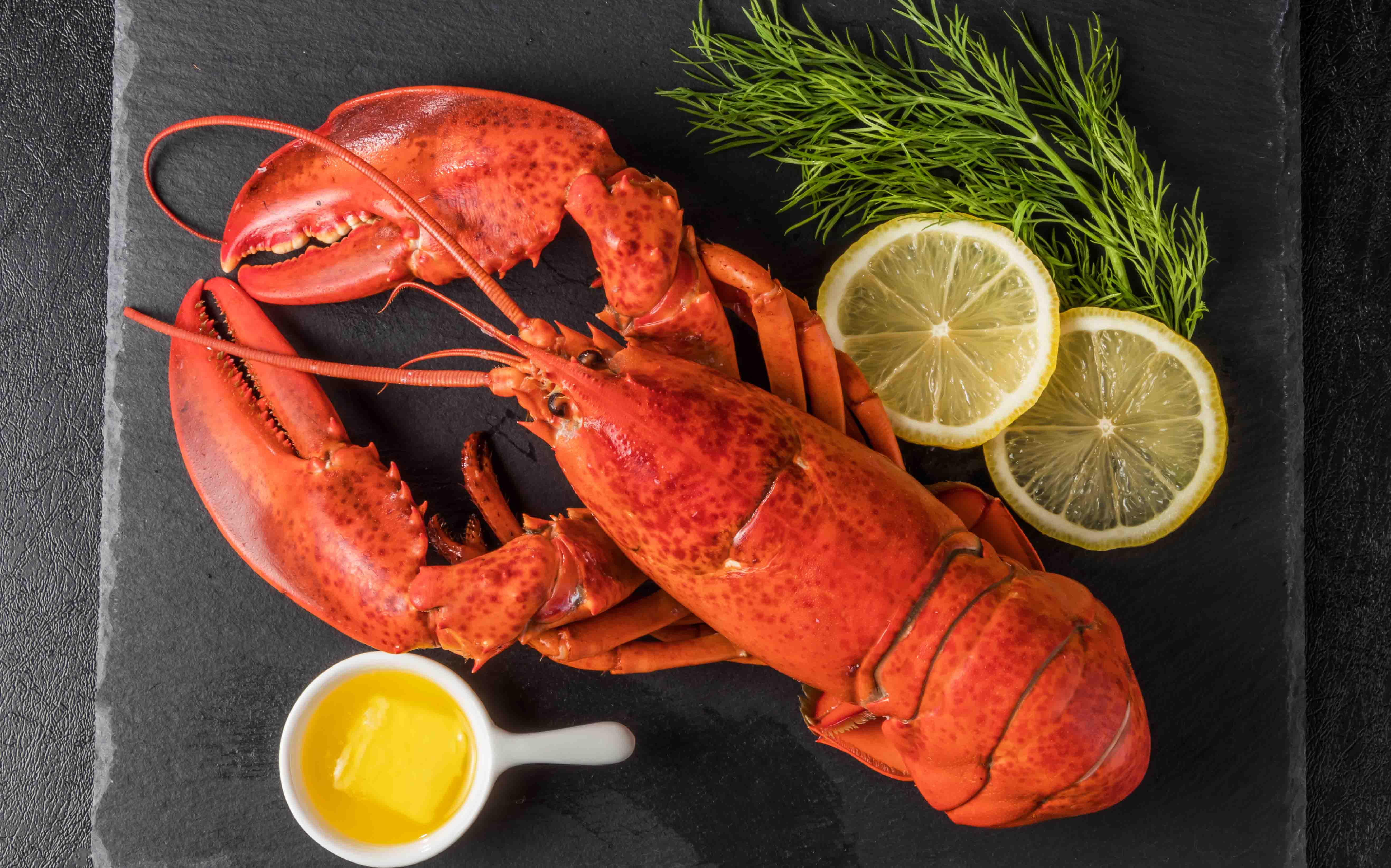 aragosta-benefici-cucina-eoliana-ristorante-filippino-lipari.jpg