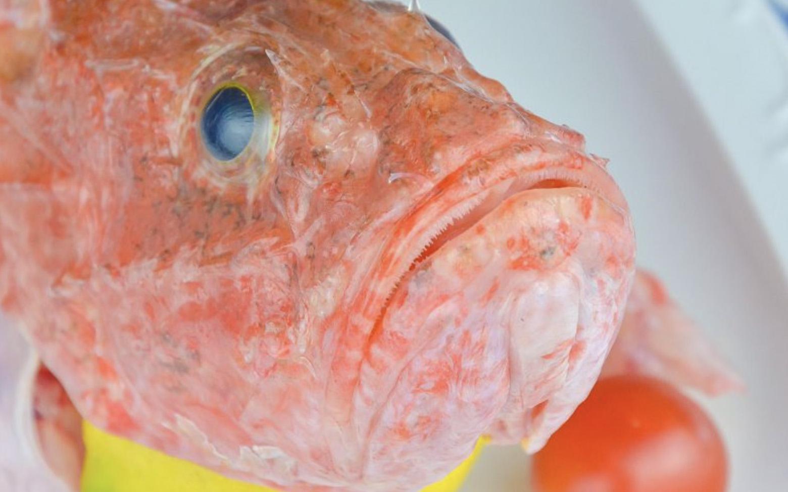 ristorante-filippino-lipari-pesce